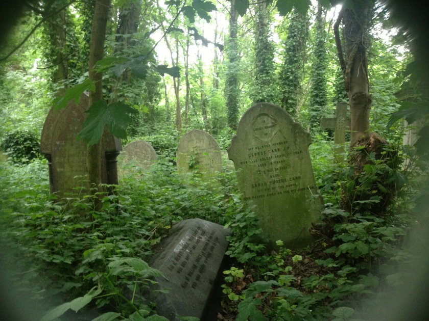 The aforementioned graveyard.